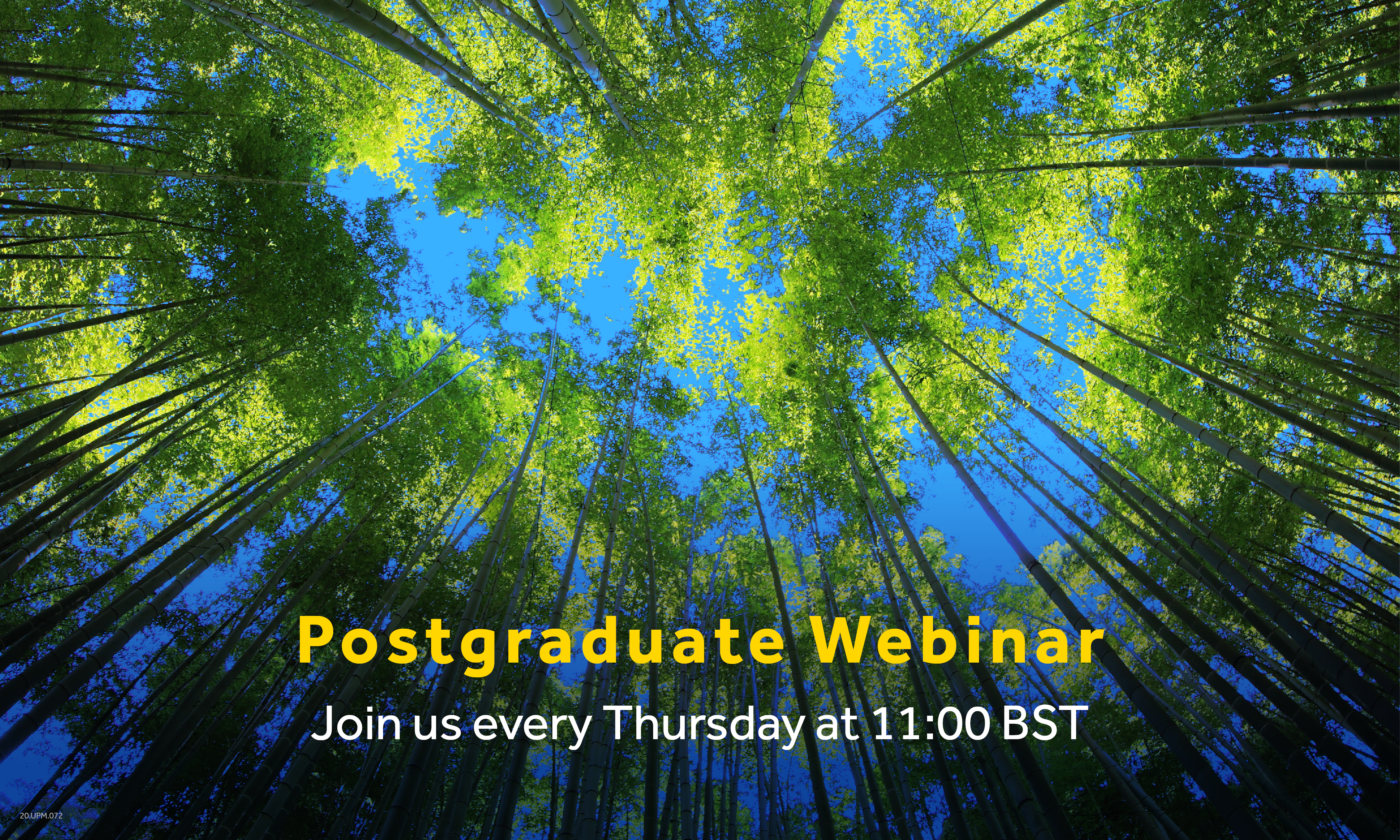 Masters Webinar - How to Grow Your Teamwork & Study Skills Whilst Learning Remotely at Henley