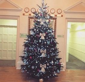 Henley-Christmas-tree-v2.jpg?mtime=20171203205428#asset:87343