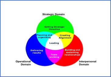 Leadership Three Domains