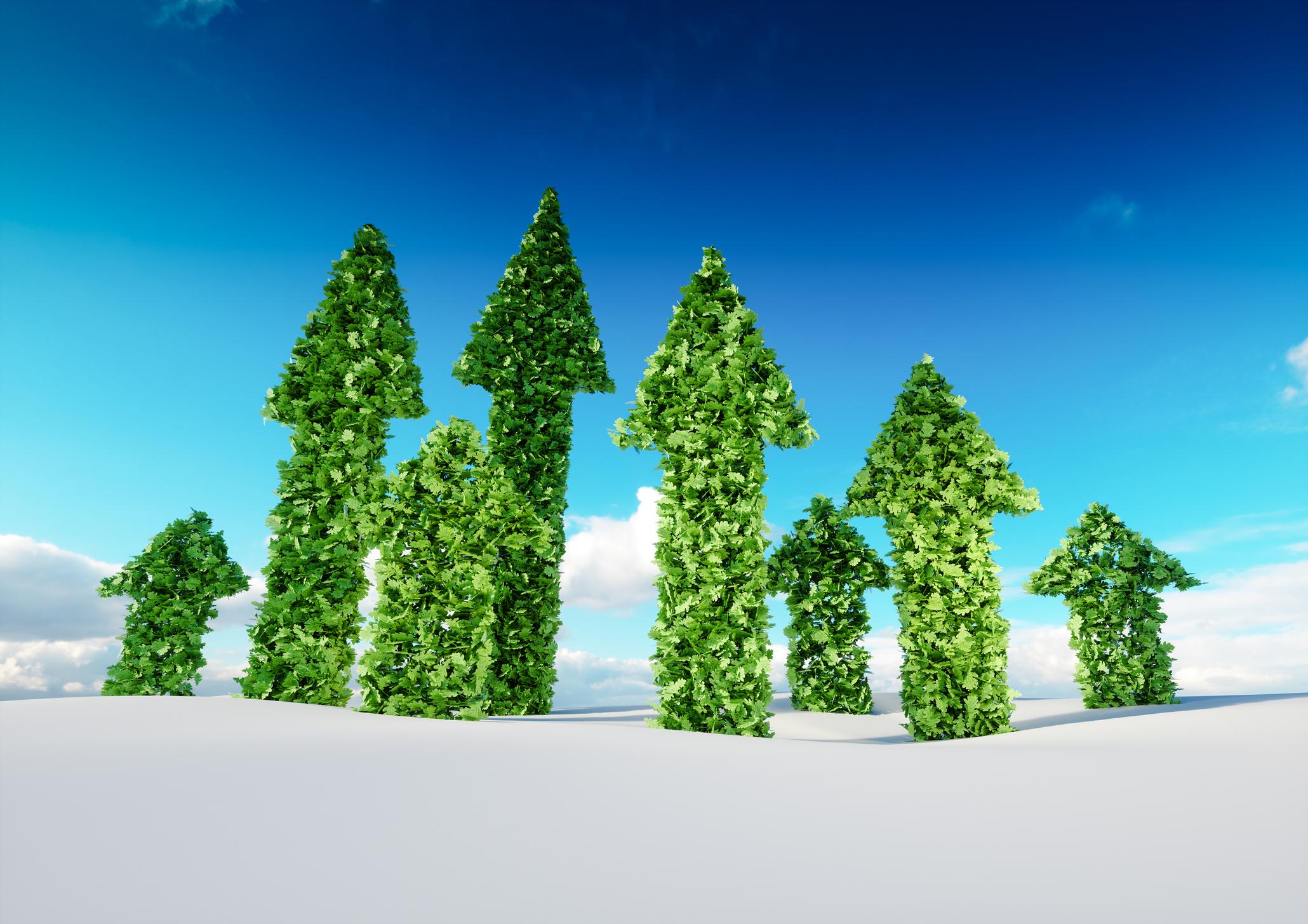 Online Masterclass - Sustainable Leadership NEW