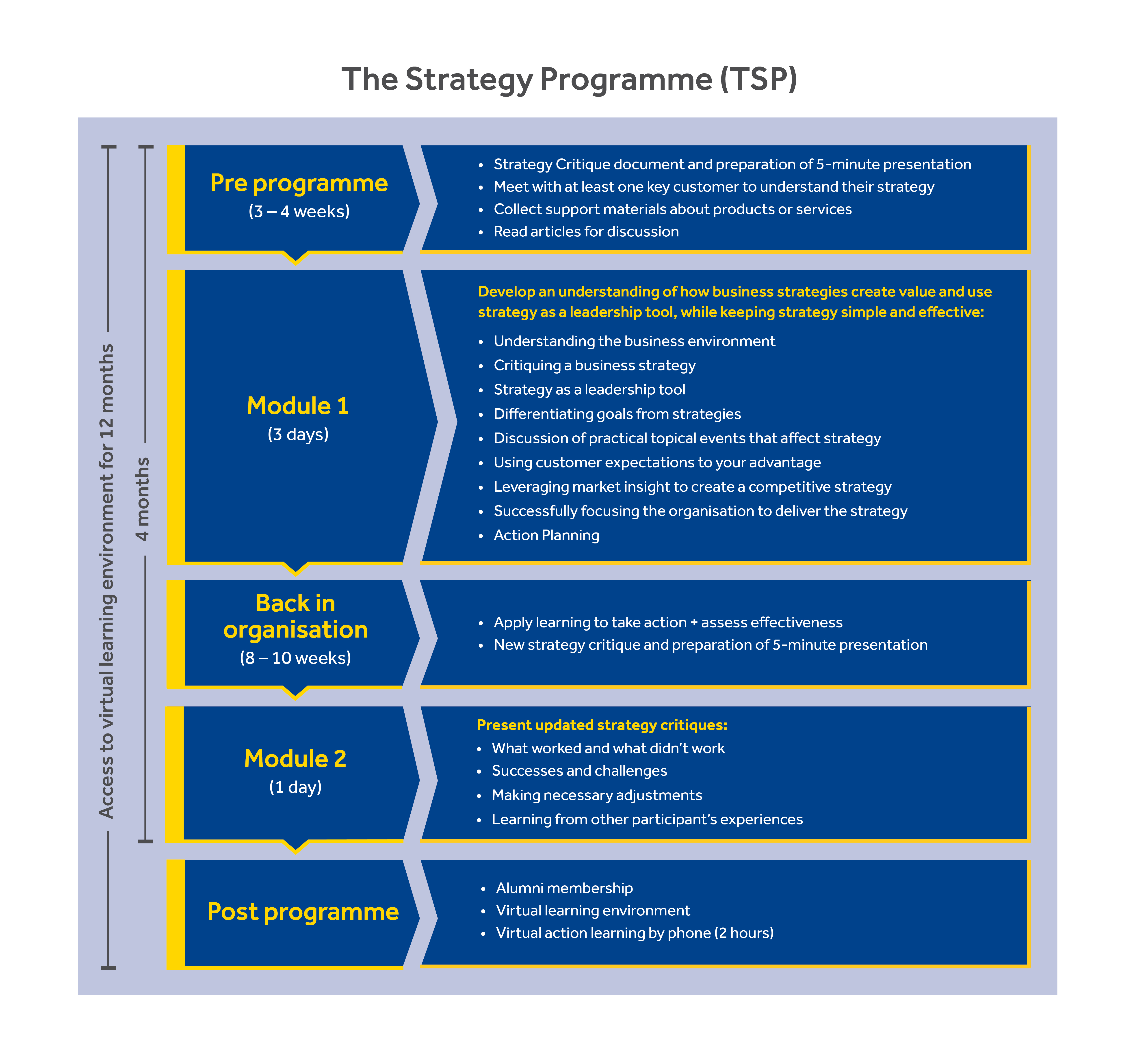 The Strategy Programme Structure Oct 19