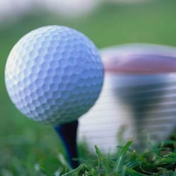 Henley Alumni Association The Netherlands Annual Open Golf Tournament 2014