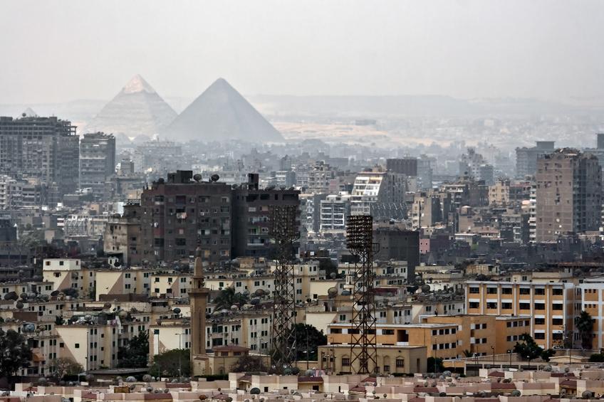 IDP Fair, Cairo