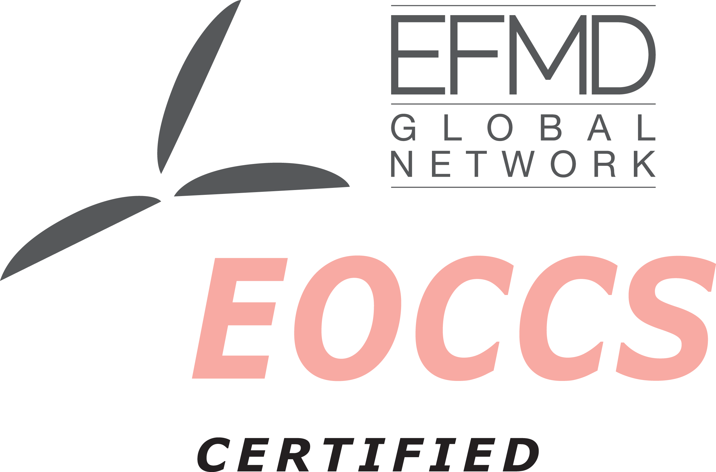 Managing People MOOC receives EFMD certification
