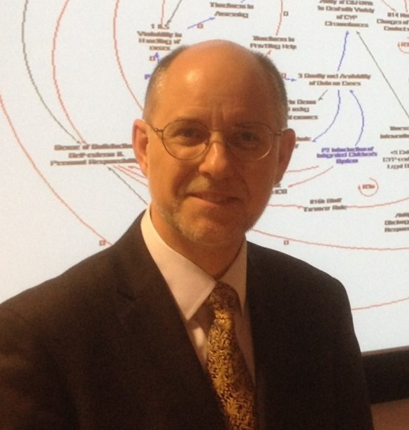 Professor David C. Lane invited speaker at Operational Research Society special interest group