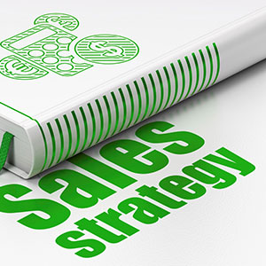 Developing a Successful Sales Strategy and Winning at Customer Development
