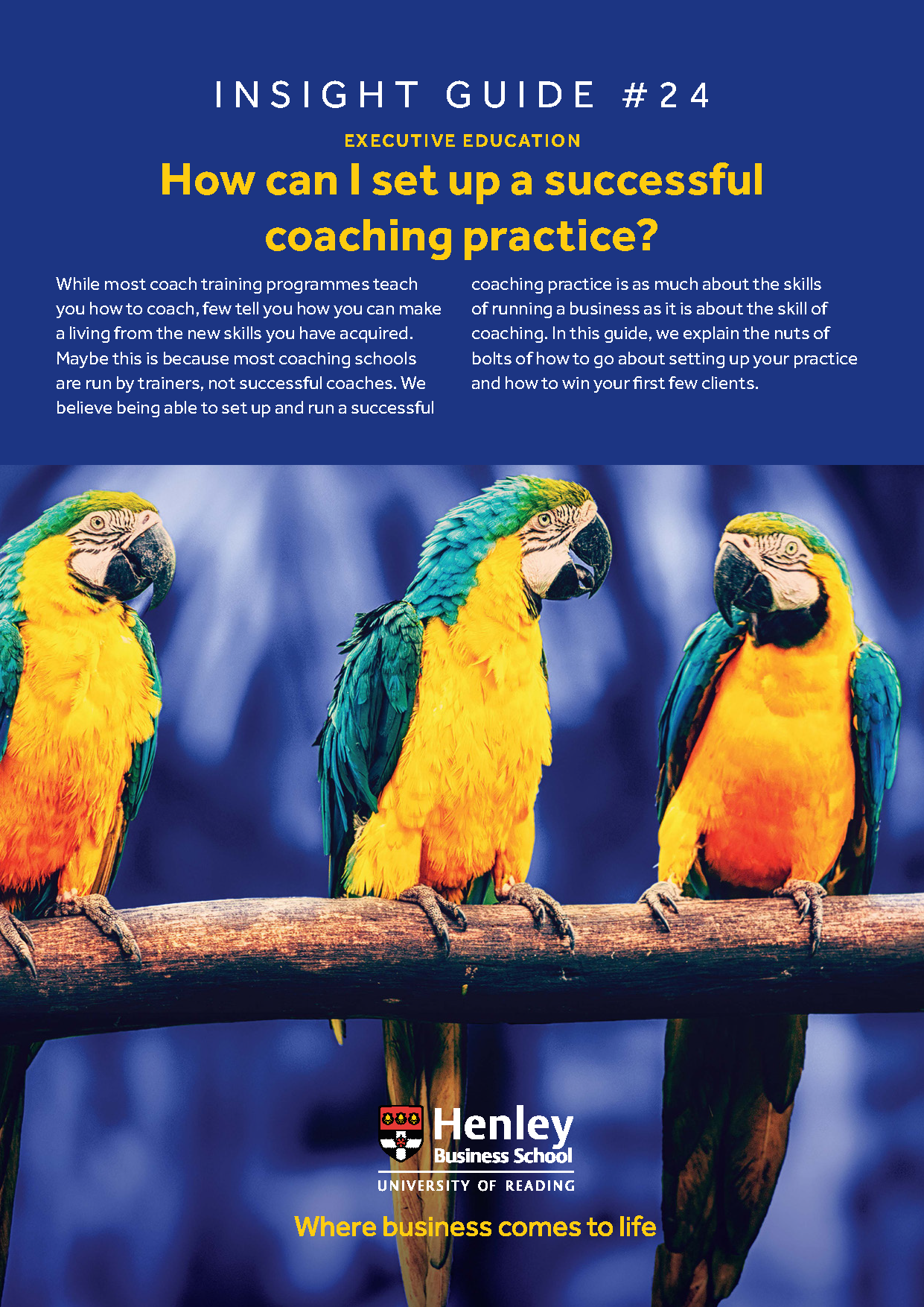 How can I set up a successful coaching practice?