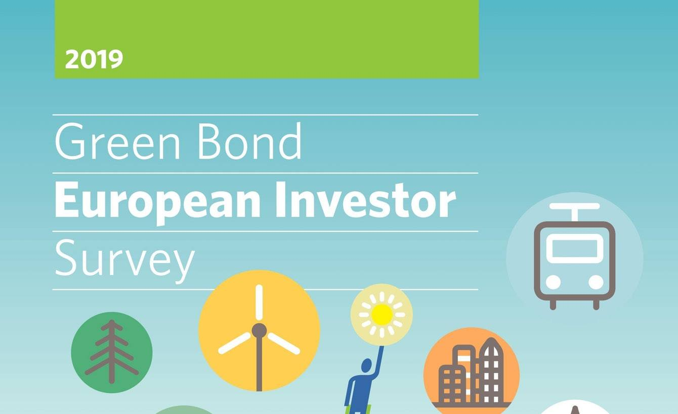 ICMA Centre academics collaborate with Climate Bonds Initiative on first Green Bond Investor Survey